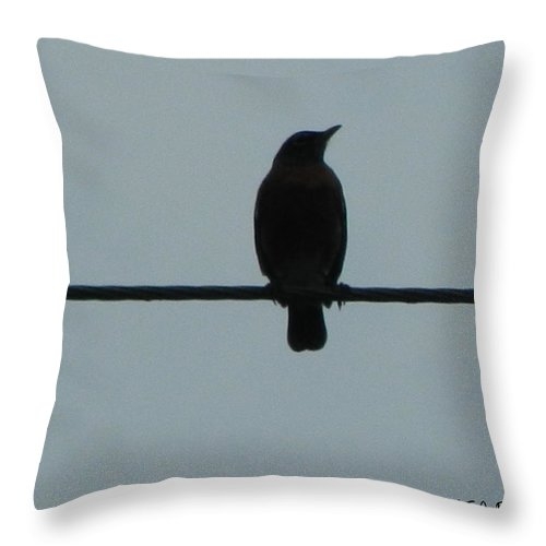 Bird Throw Pillow featuring the photograph Bird On A Wire 2 by George Pedro