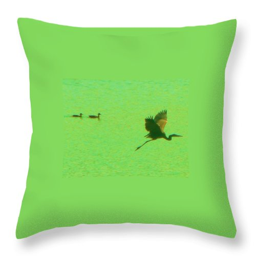 Heron Throw Pillow featuring the photograph Bird Parade by Allen Meyer