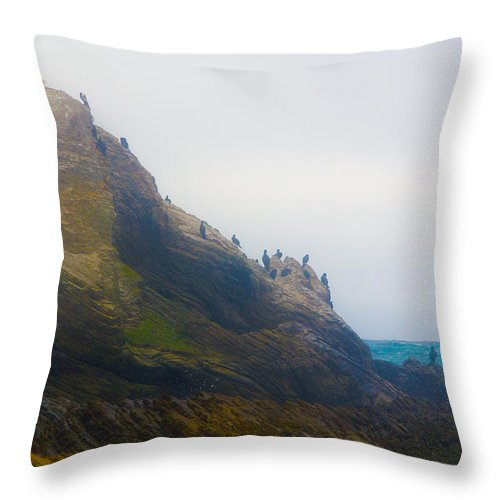 Montana De Oro State Park Throw Pillow featuring the photograph Bird Rock In The Fog by Barbara Snyder