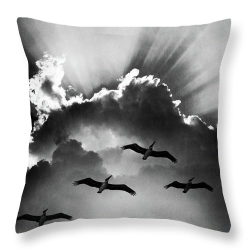 Birds In Sky Flying Clouds Throw Pillow For Sale By Vintage Images