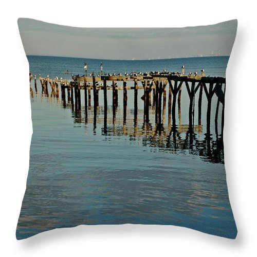 Alabama Photographer Throw Pillow featuring the painting Birds On Old Dock On The Bay by Michael Thomas