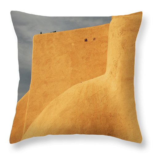 Built Structure Throw Pillow featuring the photograph Birds Perched On A Yellow Building by Win-initiative