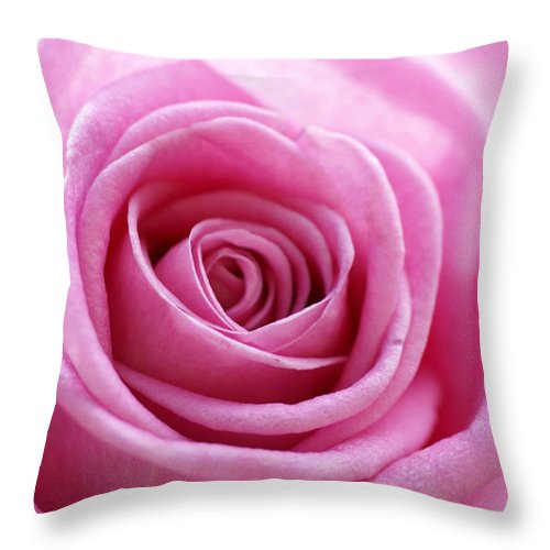 Pink Throw Pillow featuring the photograph Birthday Pink by Carol Lynch
