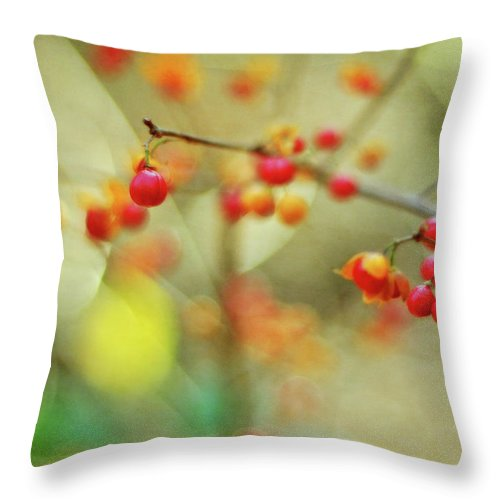 Bittersweet Throw Pillow featuring the photograph Bittersweet Symphony by Rebecca Sherman