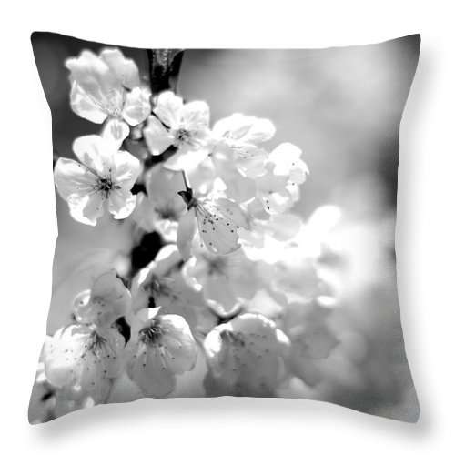 Black And White Blossoms Throw Pillow featuring the photograph Black And White Blossoms by Scott Hill