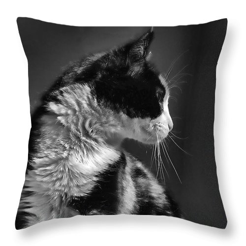 Cat Throw Pillow featuring the photograph Black And White Cat In Profile by Jennie Marie Schell
