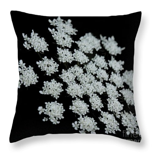 Black Throw Pillow featuring the photograph Black And White by Lilliana Mendez