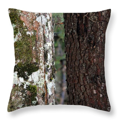 Fine Art Photography Throw Pillow featuring the photograph Black And White Tree by Ulli Karner