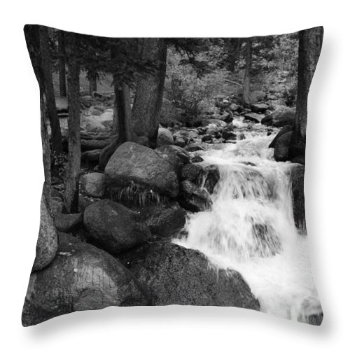 Waterfall Throw Pillow featuring the photograph Black And White Waterfall by Tammy Burgess