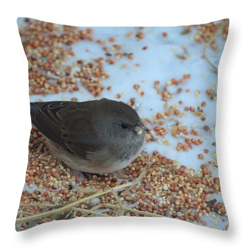 Bird Throw Pillow featuring the photograph Black Eyed Junco by Bonfire Photography