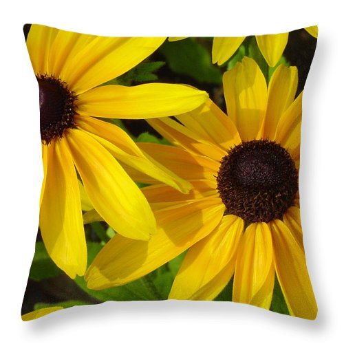 Black Eyed Susan Throw Pillow featuring the photograph Black-eyed Susans Close Up by Suzanne Gaff