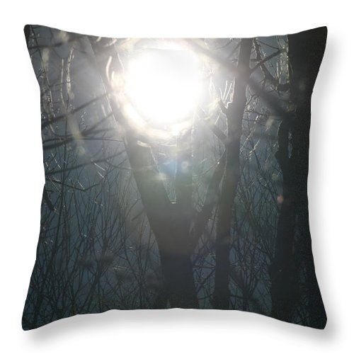 Sun And Trees Throw Pillow featuring the photograph Black On Sun  by Neal Eslinger