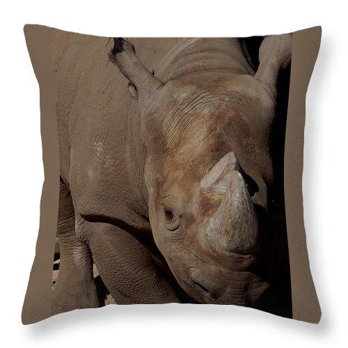 Black Rhino Throw Pillow featuring the photograph Black Rhino by Ernie Echols