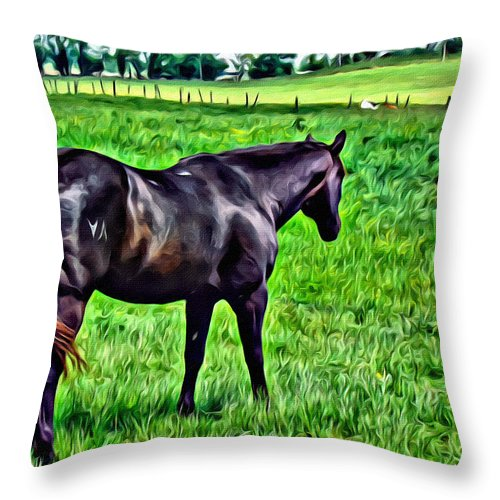 Stallion Throw Pillow featuring the photograph Black Stallion In Pasture by Alice Gipson