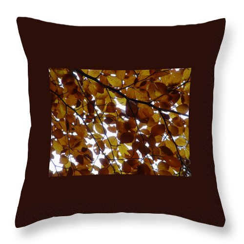 Bomen Throw Pillow featuring the photograph Bladerdek by Ton Bocxe