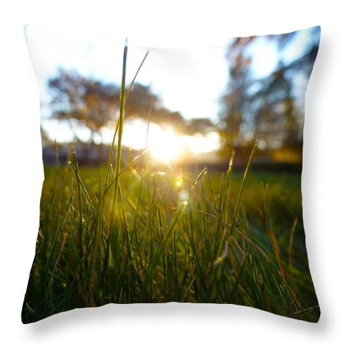 Photography Throw Pillow featuring the photograph Blades Of Grassy Light by Fabien White