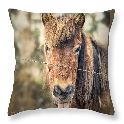 Funny Horse Throw Pillow featuring the photograph Blah by Caitlyn Grasso