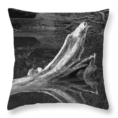Landscape Throw Pillow featuring the photograph Bleached Log 1 by Don Hall