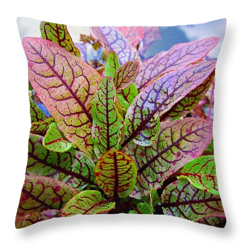 Bloody Dock Throw Pillow featuring the photograph Bloody Dock by MTBobbins Photography