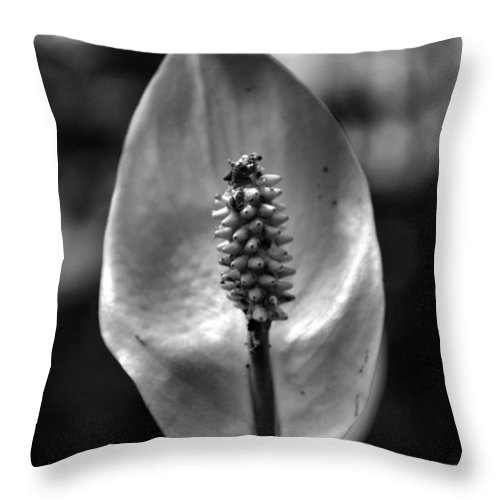 Nature Throw Pillow featuring the photograph Bloom by Dan Sproul