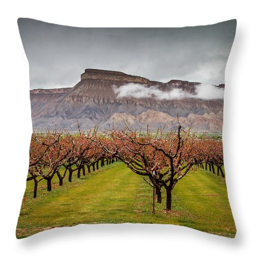 Mt Garfield Throw Pillow featuring the photograph Blooming Orchards 2 by Laurie Purcell