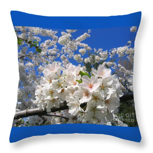 Spring Throw Pillow featuring the photograph Blossoms Of Spring by Ann Horn