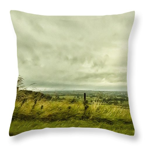 Field Throw Pillow featuring the photograph Blowing In The Wind by Margie Hurwich