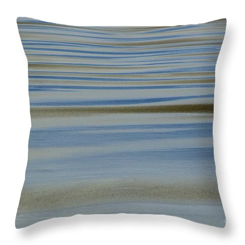 Blue And Gold Throw Pillow featuring the photograph Blue And Gold by Wendy Wilton