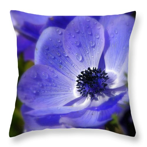 Blue Anemone Throw Pillow For Sale By Martina Rathgens