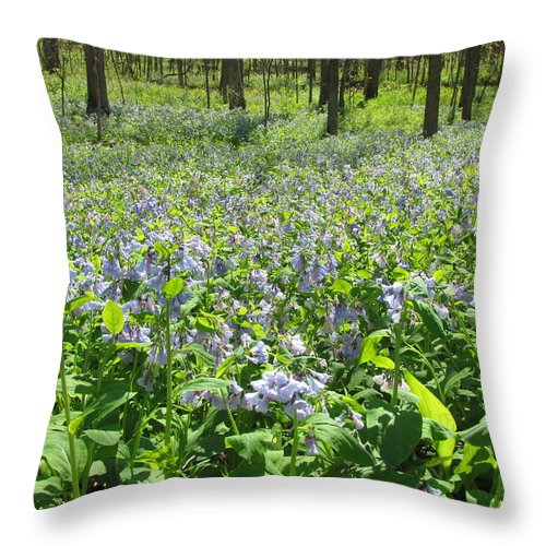 Blue Bells Throw Pillow featuring the photograph Blue Bells by Eric Noa