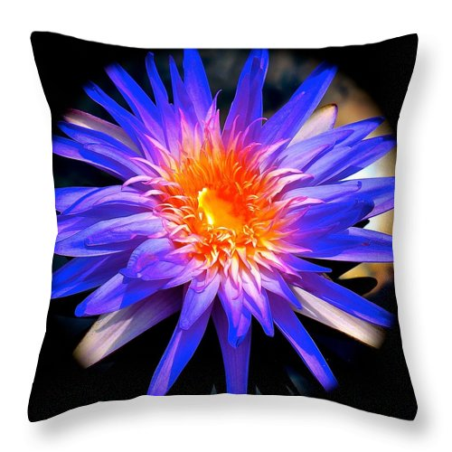 Water Lily Throw Pillow featuring the photograph Blue Burst Lily by Tim G Ross