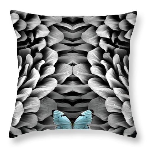 Microscope Throw Pillow featuring the photograph Blue Butterfly And Antenna by Sheri Neva