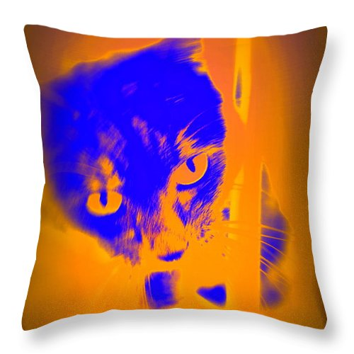 Blue Throw Pillow featuring the photograph The Blue Cat Is Watching You From Behind The Barres by Hilde Widerberg