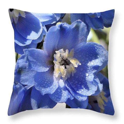 Summer Throw Pillow featuring the photograph Blue Delphinium 9655 by Terri Winkler