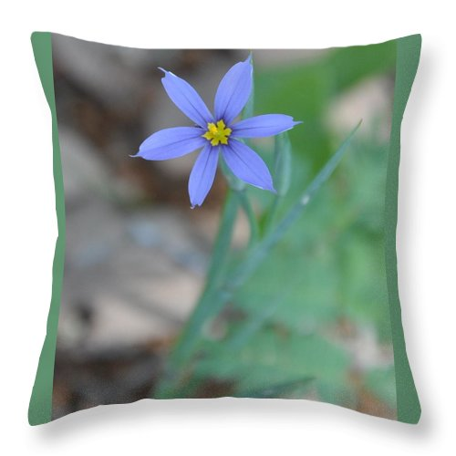 Blue Throw Pillow featuring the photograph Blue Flower by Frank Madia