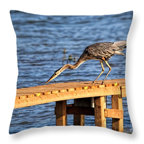 Cathy Beharriell Throw Pillow featuring the photograph Blue Heron Dragonfly Lunch by Cathy Beharriell