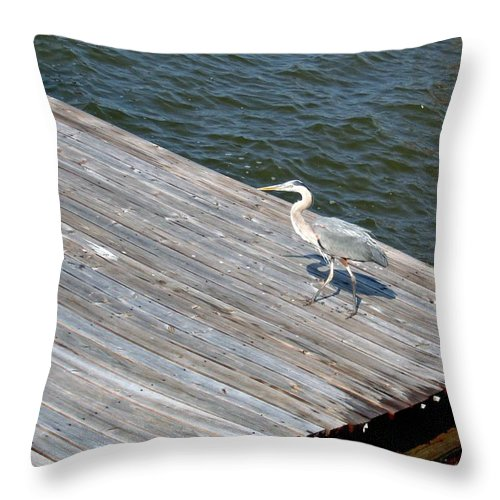 Photograph Throw Pillow featuring the photograph Blue Heron On Dock by Marian Bell