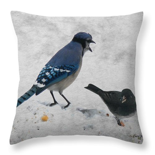 Birds Throw Pillow featuring the photograph Blue Jay And Junco by Ericamaxine Price
