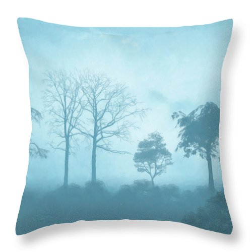 Romantic Throw Pillow featuring the painting Blue Morning by Anthony Mwangi