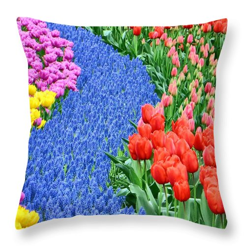 Tulips Throw Pillow featuring the photograph Blue Path Of Flowers by Jim Romo