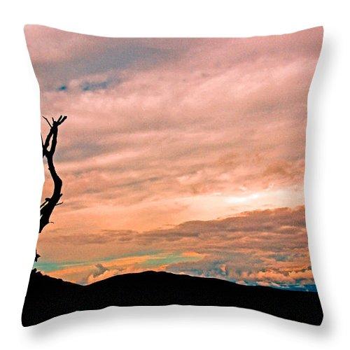Panoramic Throw Pillow featuring the photograph Blue Ridge Mountain Sunrise Panoramic by Tom Gari Gallery-Three-Photography