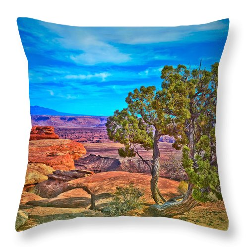 Canyonlands National Park Throw Pillow featuring the photograph Blue Skies And Canyons by Tara Turner