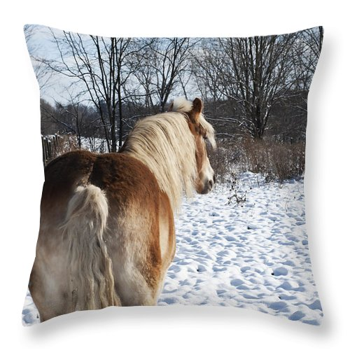 Haflinger Throw Pillow featuring the photograph Blue Skies by Annette Persinger
