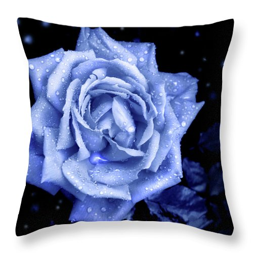 Rose Throw Pillow featuring the photograph Blue Without You by Nina Fosdick