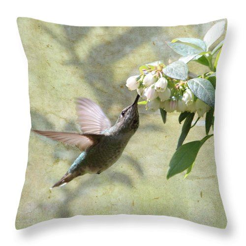 Hummingbird Throw Pillow featuring the photograph Blueberry Blossom Dessert by Angie Vogel