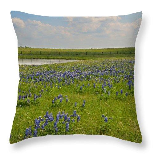 Water Throw Pillow featuring the photograph Bluebonnet Bliss by Lynn Bauer