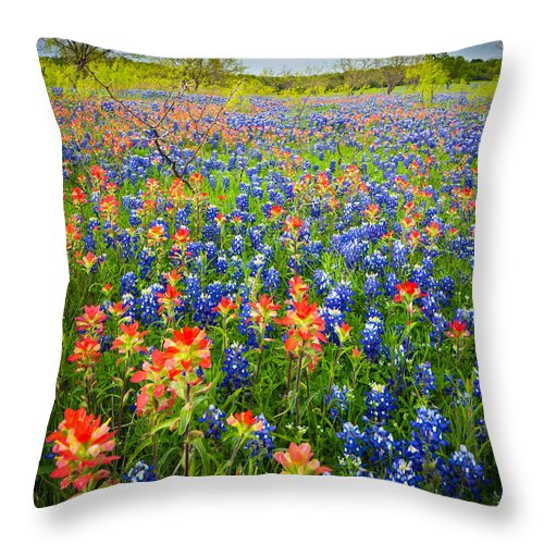 America Throw Pillow featuring the photograph Bluebonnets And Prarie Fire by Inge Johnsson