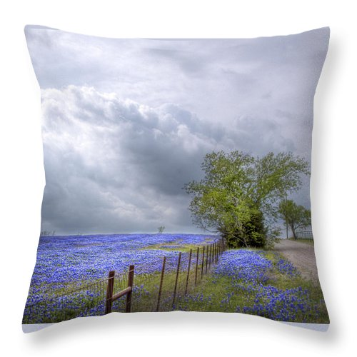 Spring Throw Pillow featuring the photograph Bluebonnets And Spring Rain by David and Carol Kelly