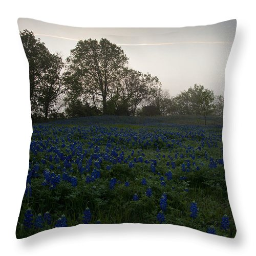 Bluebonnets Throw Pillow featuring the photograph Bluebonnets On A Hazy Morning by Mark Alder