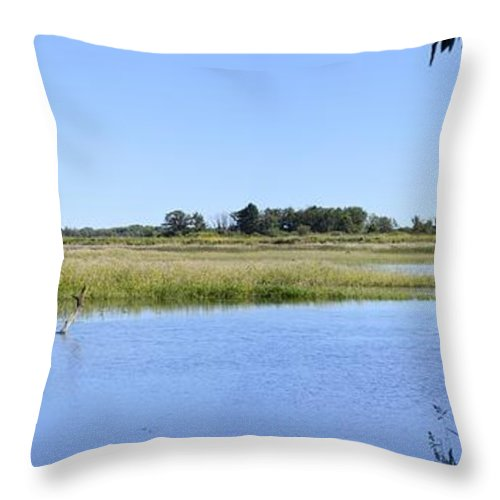 Blue Throw Pillow featuring the photograph Bluer Than Blue by Bonfire Photography